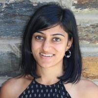 Natasha A Parikh